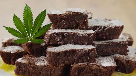 Ricetta Biscotti Hashish.Ecco Come Fare Dei Buonissimi Biscotti Alla Cannabis Cannabis Light Guru